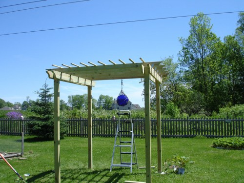 Build a Grape Arbor Trellis